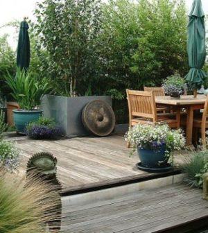 Piante e fiori su balconi, terrazze e giardino con esposizione sud ...